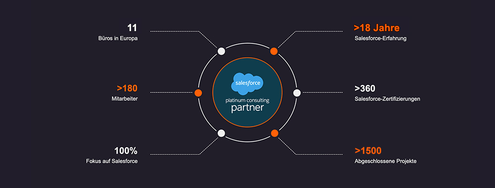 Overview as a Salesforce platinum consulting partner in German view