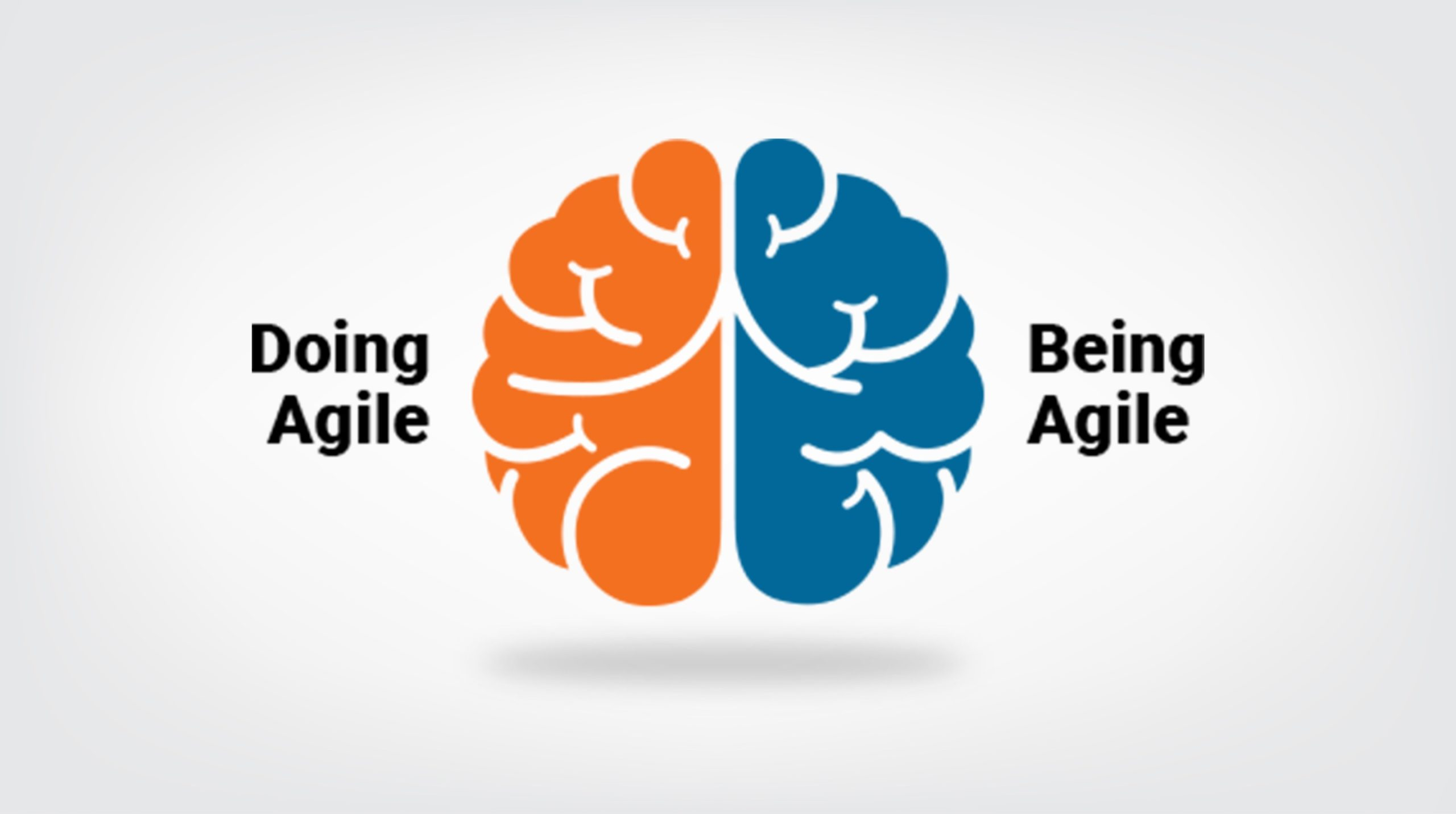blog-banner-Stop-Doing-Agile-And-Start-being-Agile