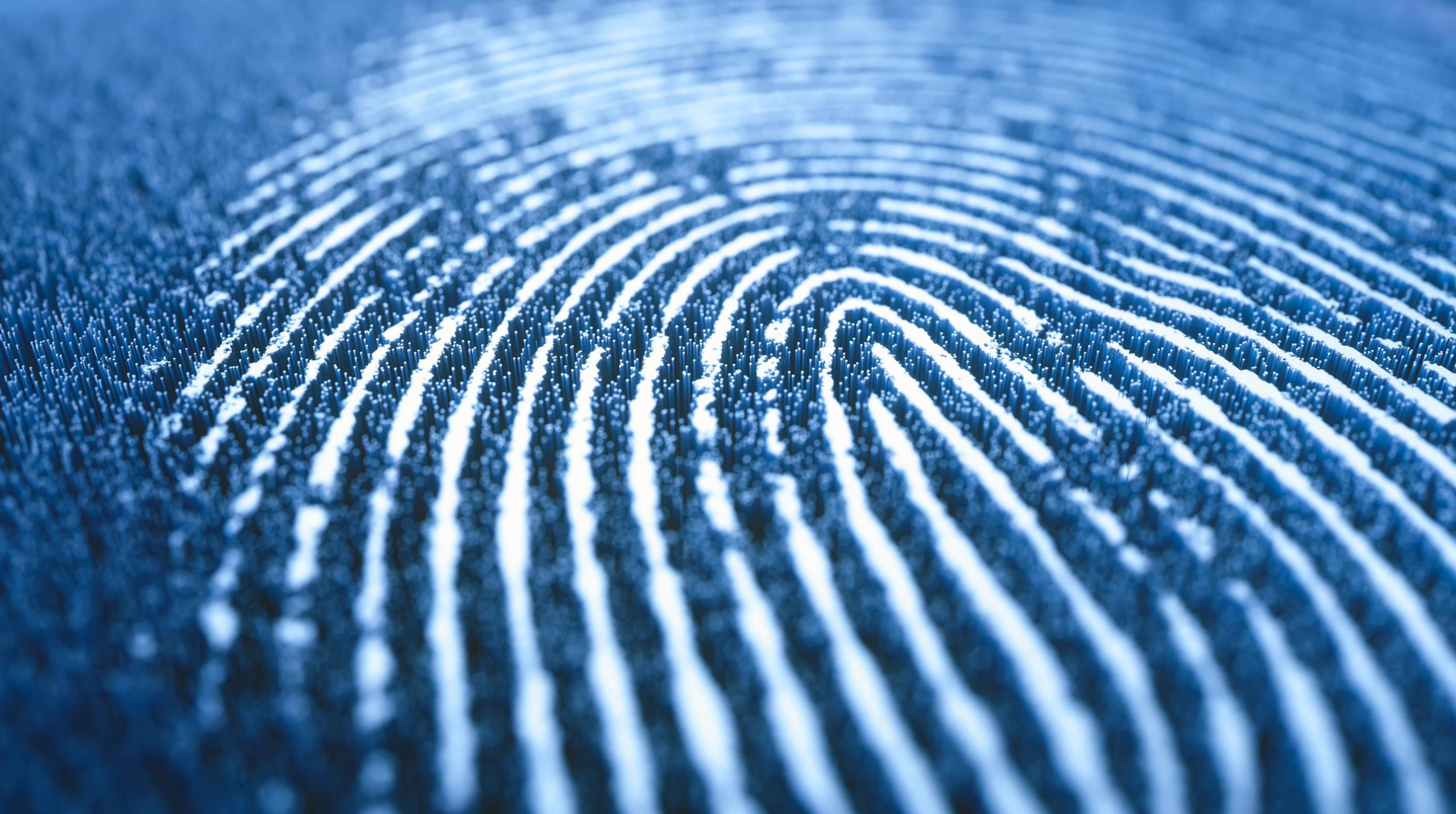 2021 Identity and Security Trends